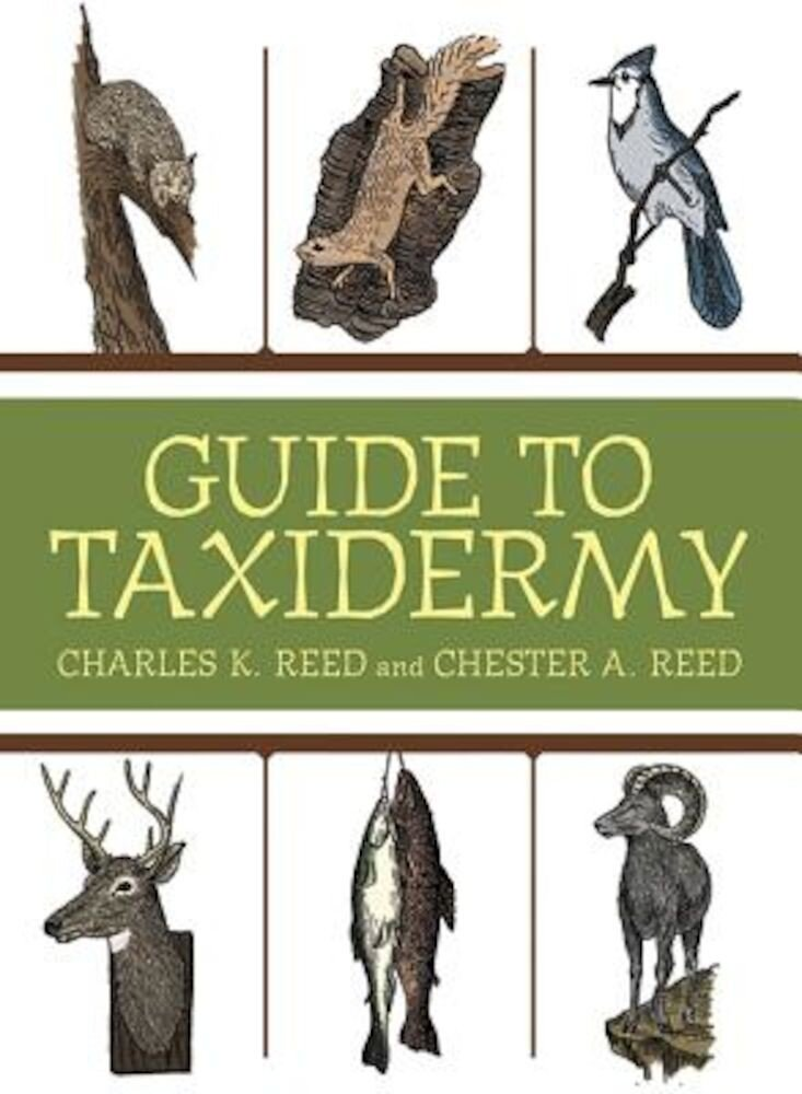 Guide to Taxidermy, Paperback