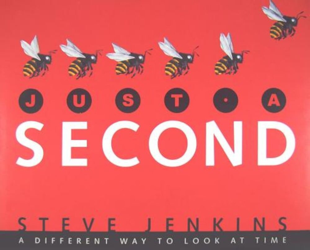 Just a Second: A Different Way to Look at Time, Hardcover