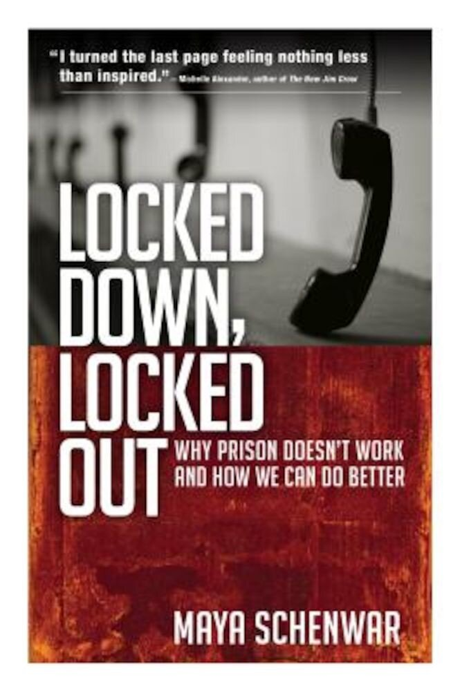Locked Down, Locked Out: Why Prison Doesn't Work and How We Can Do Better, Paperback