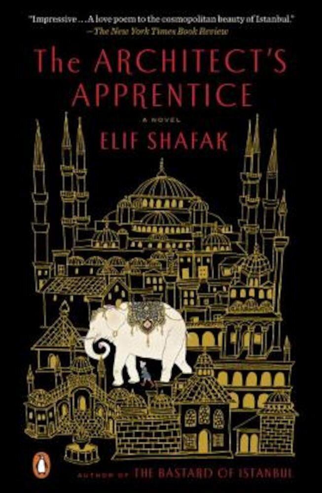 The Architect's Apprentice, Paperback