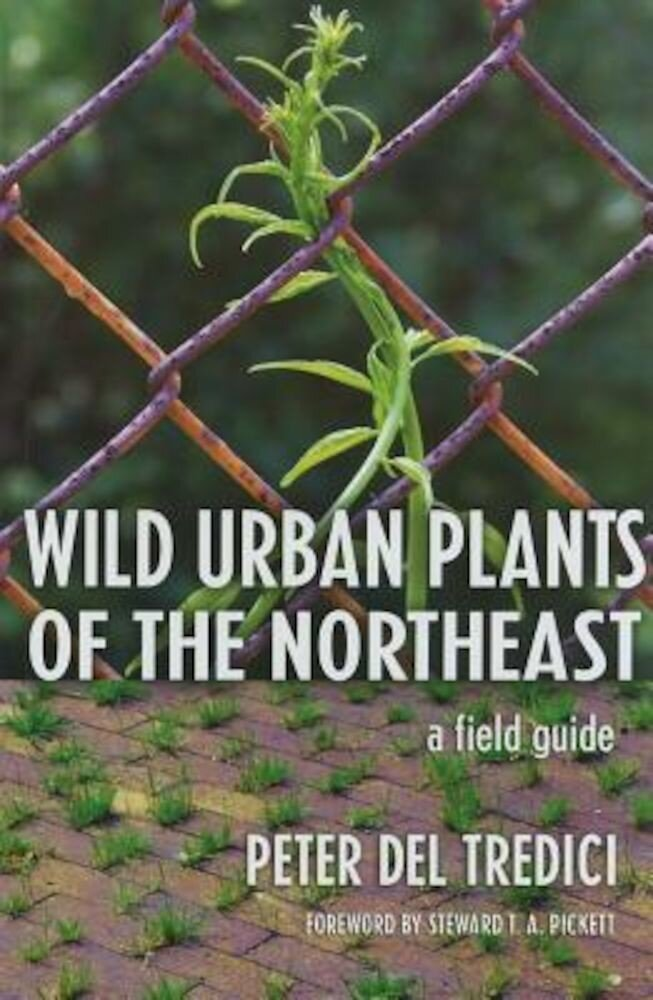 Wild Urban Plants of the Northeast: A Field Guide, Paperback