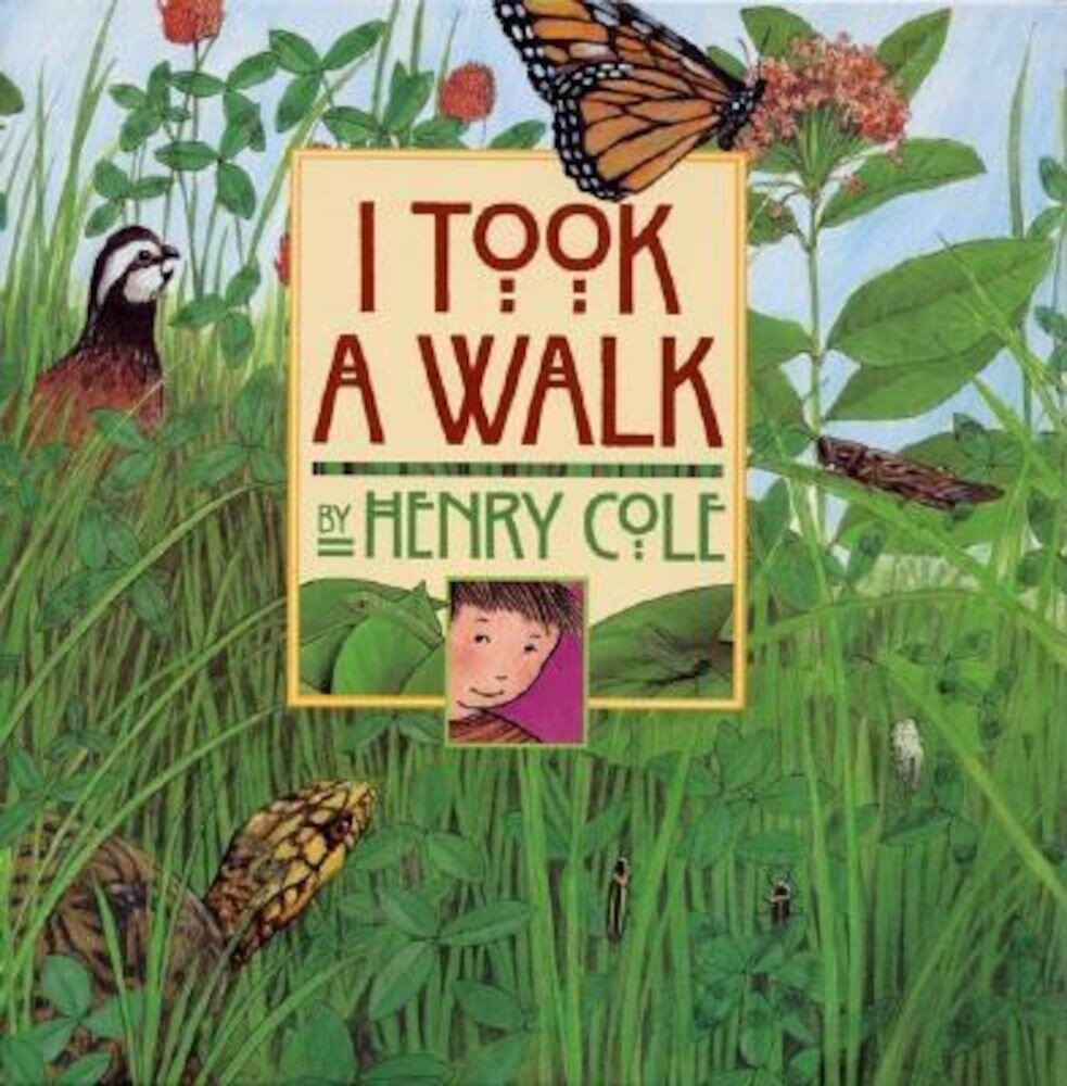 I Took a Walk, Hardcover