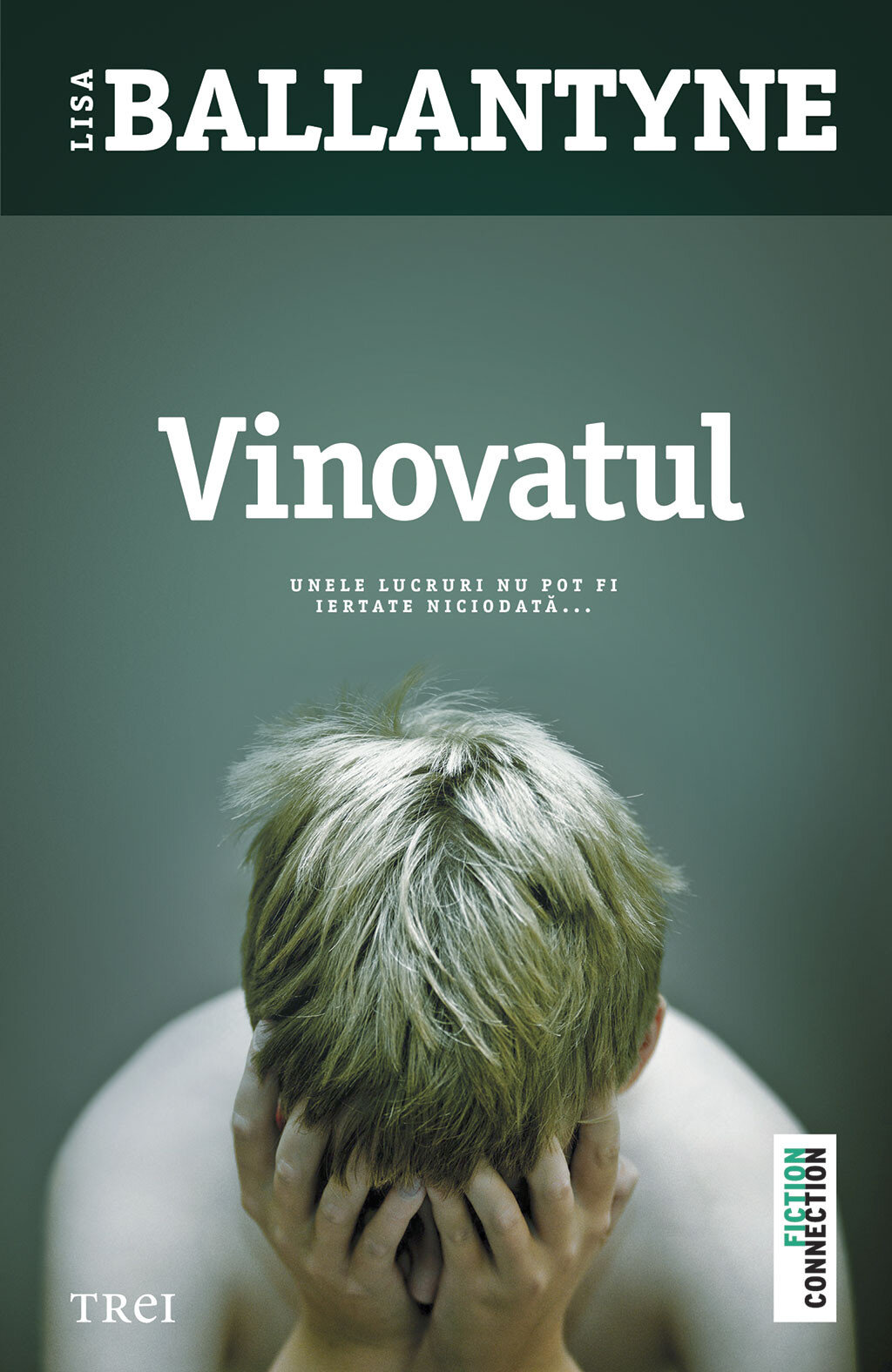 Vinovatul (eBook)