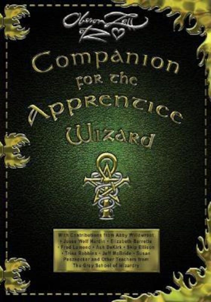 Companion for the Apprentice Wizard, Paperback