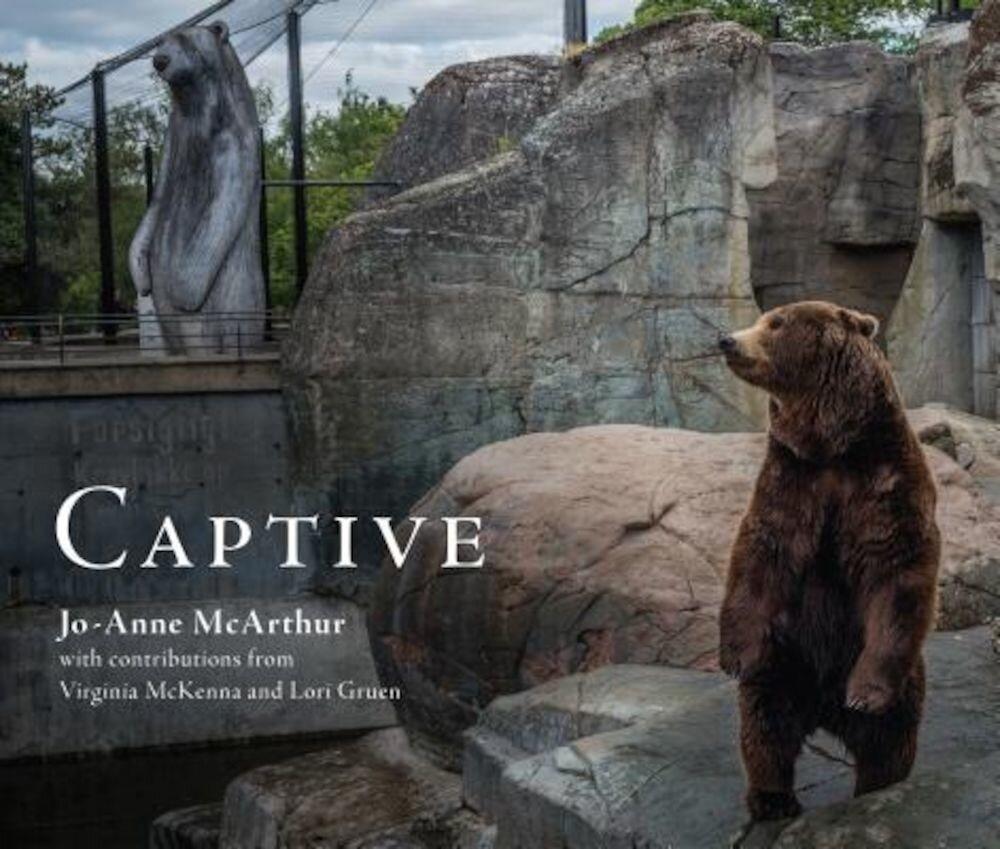 Captive, Paperback