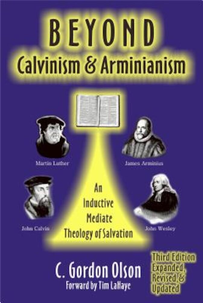 Beyond Calvinism & Arminianism: An Inductive, Mediate Theology of Salvation, Paperback