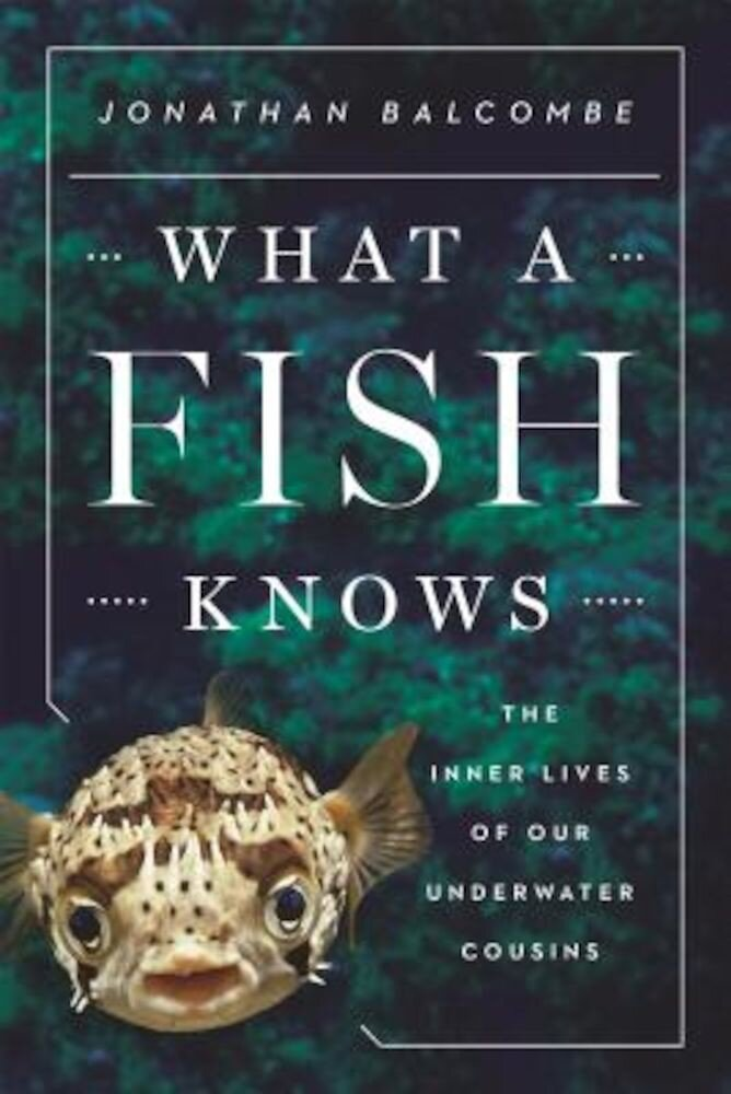 What a Fish Knows: The Inner Lives of Our Underwater Cousins, Hardcover