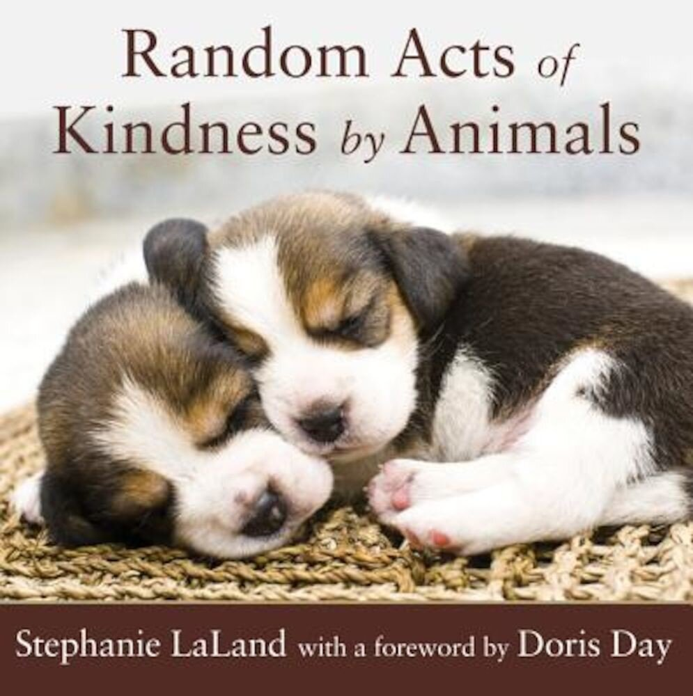Random Acts of Kindness by Animals, Paperback