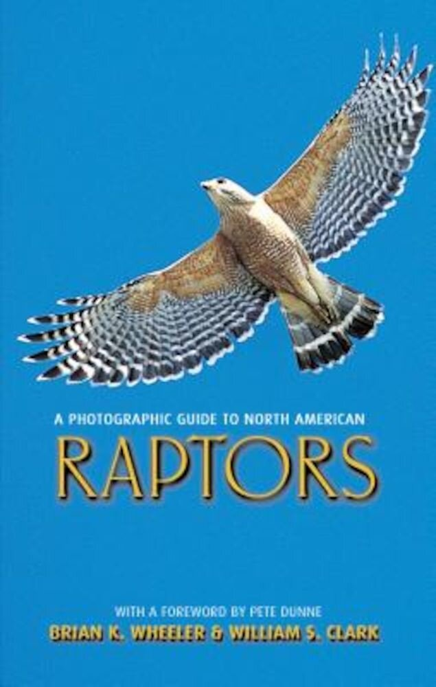 A Photographic Guide to North American Raptors, Paperback