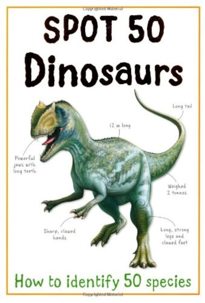 Spot 50 Dinosaurs - Large Format