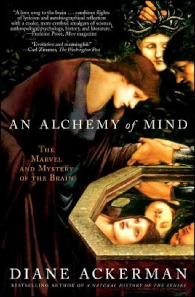 An Alchemy of Mind: The Marvel and Mystery of the Brain, Paperback