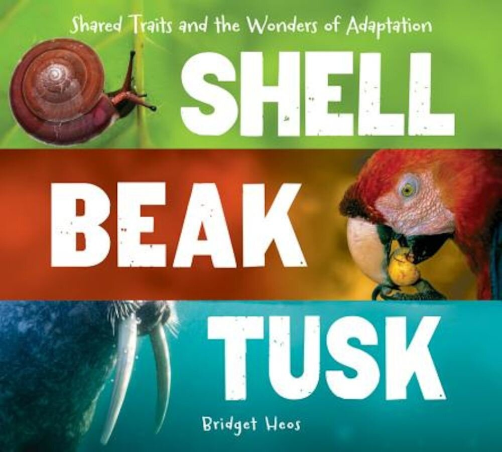 Shell, Beak, Tusk: Shared Traits and the Wonders of Adaptation, Hardcover