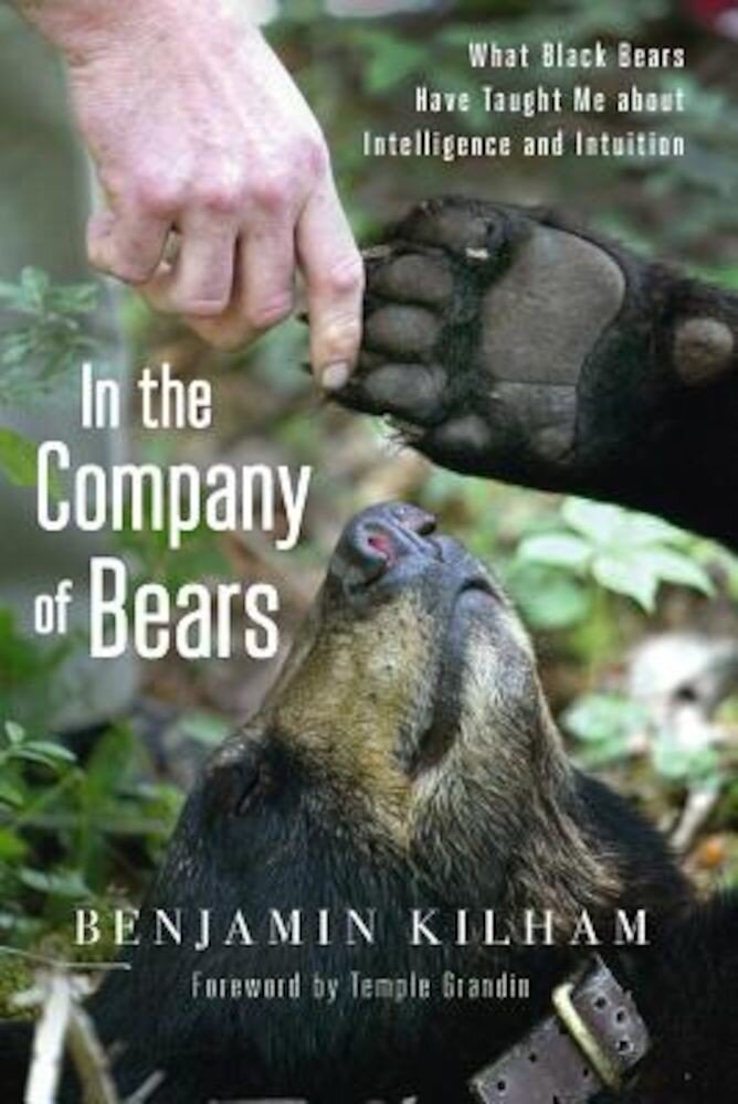 In the Company of Bears: What Black Bears Have Taught Me about Intelligence and Intuition, Paperback