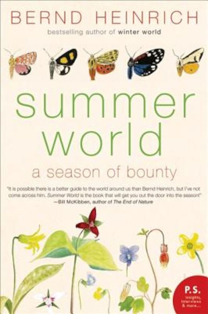 Summer World: A Season of Bounty, Paperback