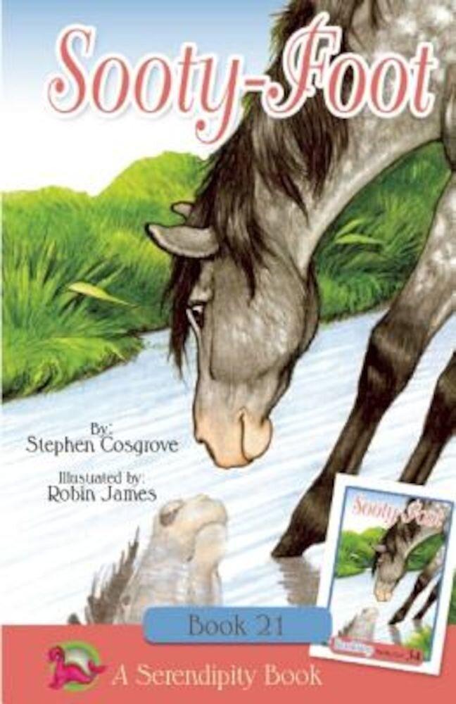Sooty-Foot, Paperback