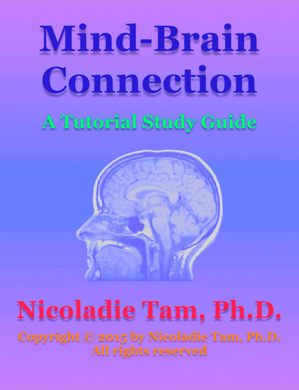 Mind-Brain Connection: A Tutorial Study Guide (eBook)