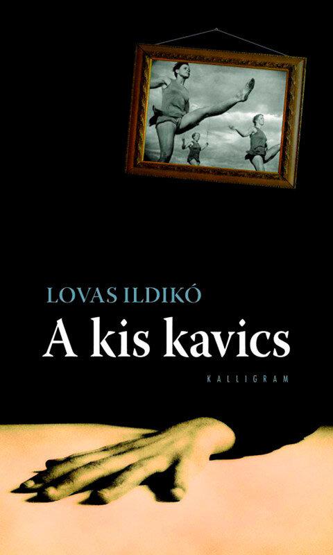 A kis kavics (eBook)