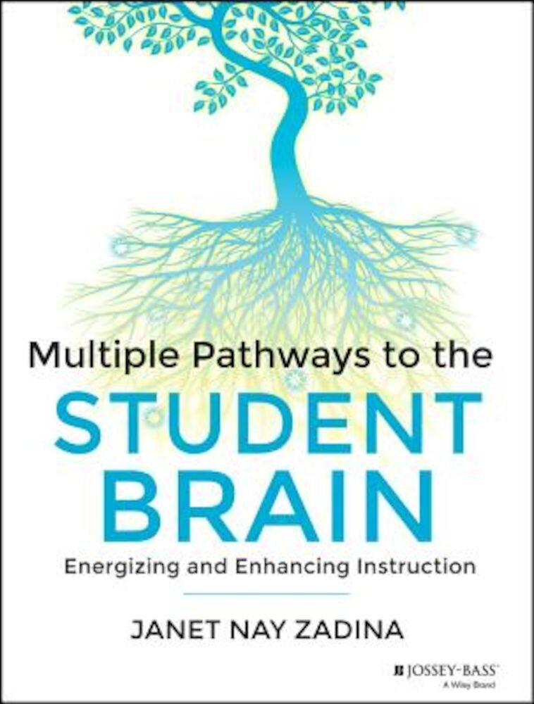 Multiple Pathways to the Student Brain: Energizing and Enhancing Instruction, Paperback