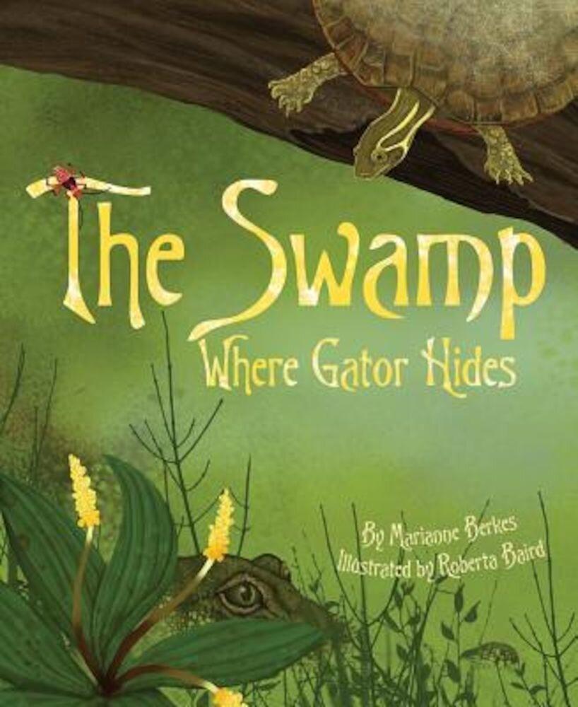 The Swamp Where Gator Hides, Paperback