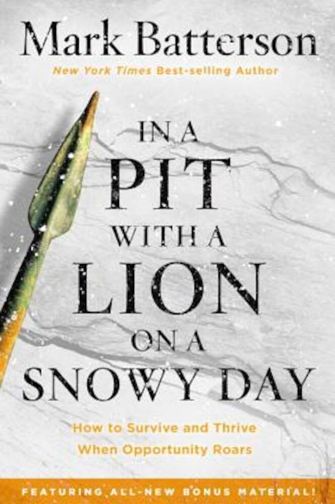 In a Pit with a Lion on a Snowy Day: How to Survive and Thrive When Opportunity Roars, Paperback