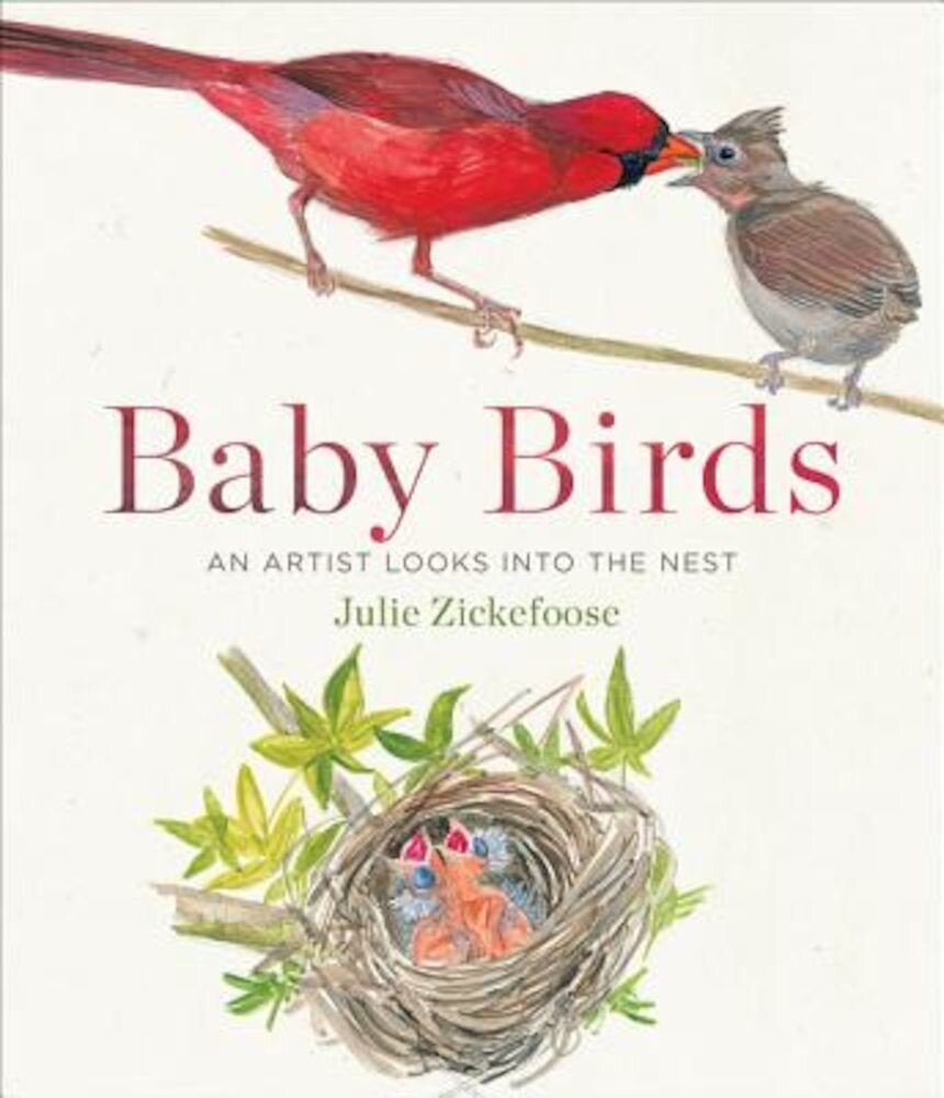 Baby Birds: An Artist Looks Into the Nest, Hardcover