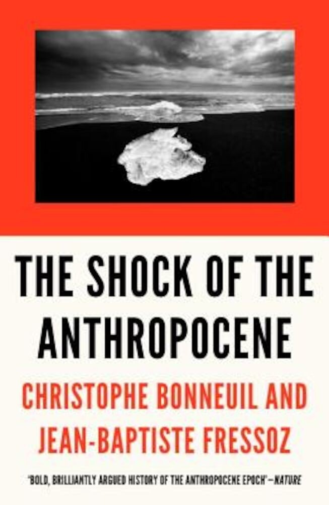 The Shock of the Anthropocene: The Earth, History and Us, Paperback