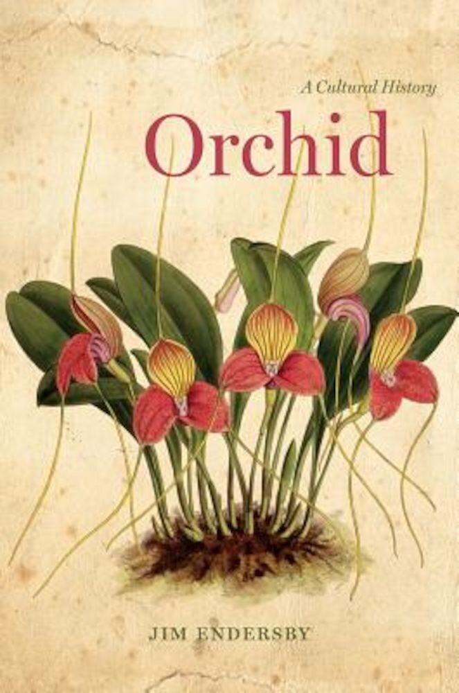 Orchid: A Cultural History, Hardcover
