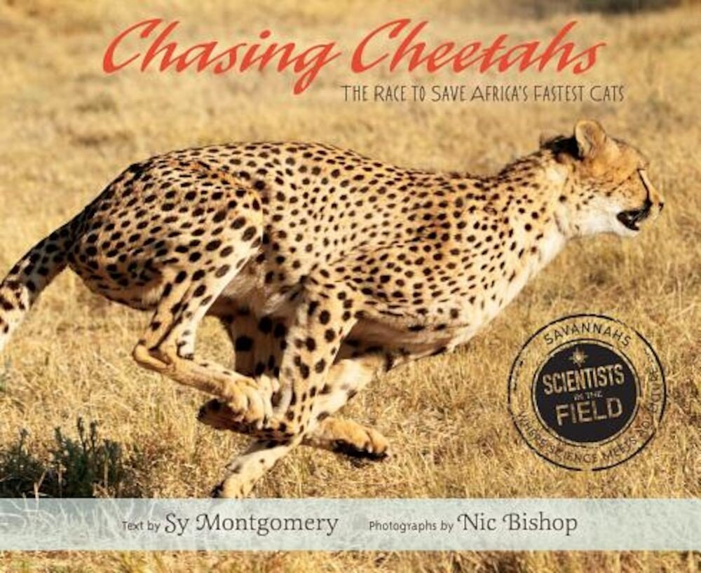 Chasing Cheetahs: The Race to Save Africa's Fastest Cat, Hardcover