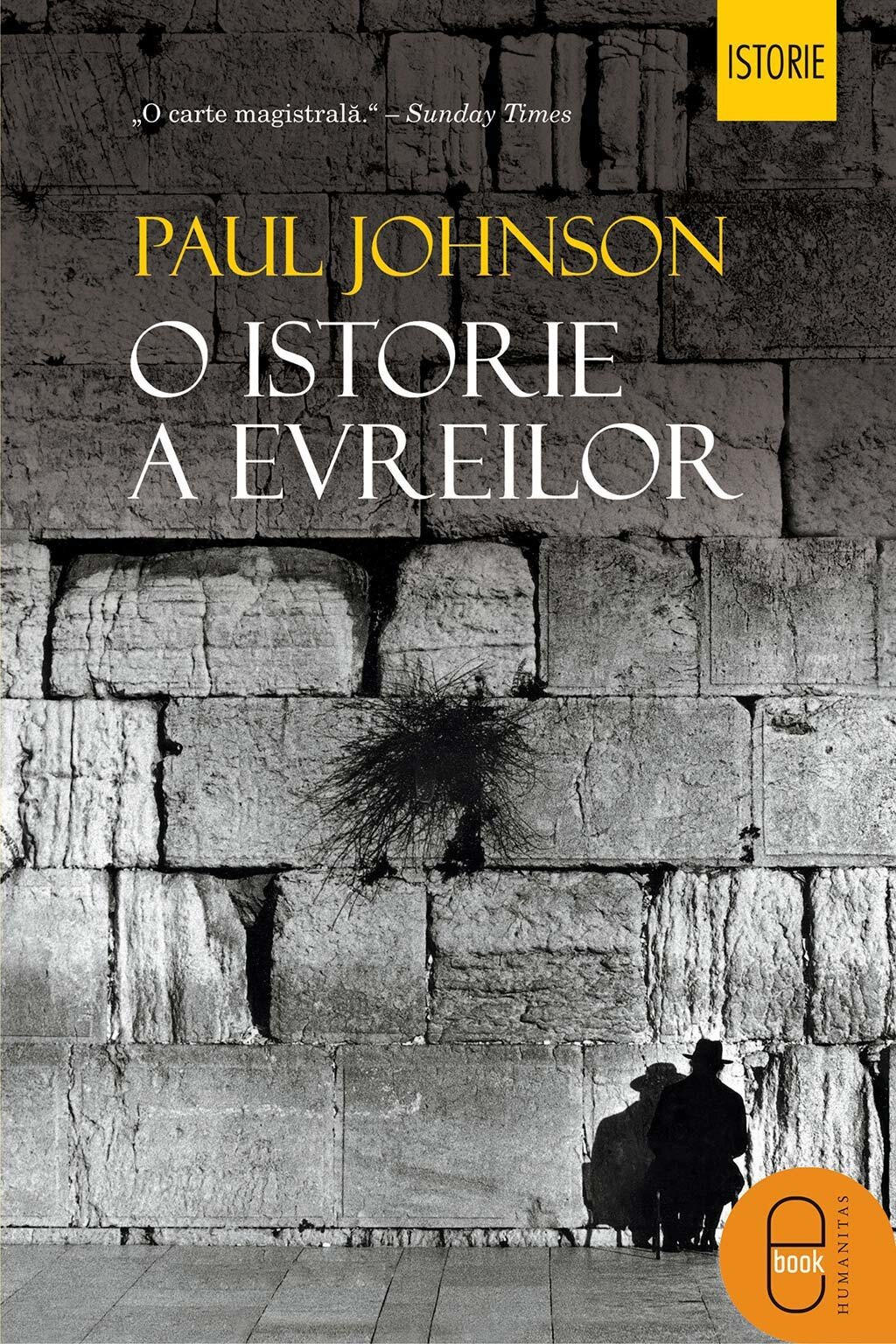 O istorie a evreilor (eBook)