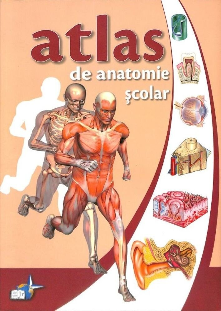 Coperta Carte Atlas de anatomie scolara (editie necartonata)