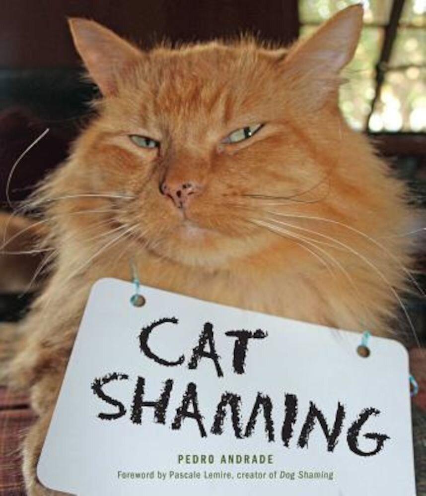 Cat Shaming, Paperback