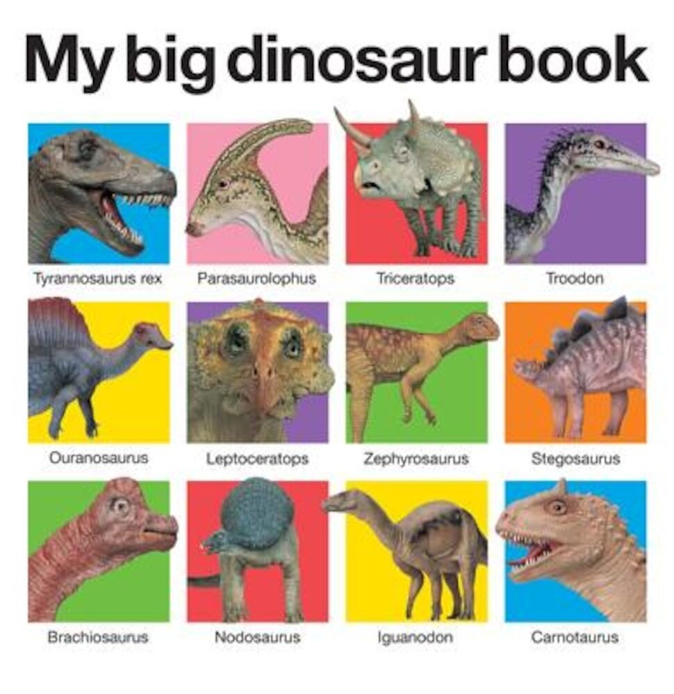 My Big Dinosaur Book, Hardcover