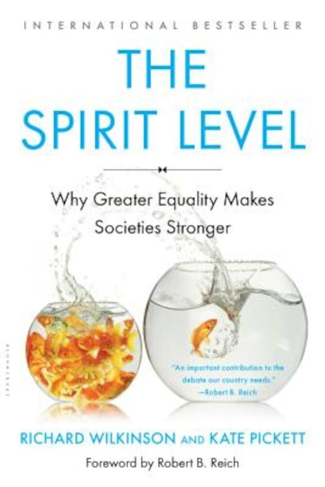 The Spirit Level: Why Greater Equality Makes Societies Stronger, Paperback