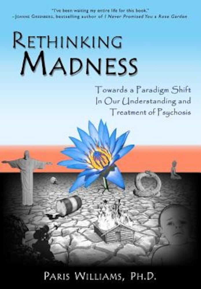 Rethinking Madness: Towards a Paradigm Shift in Our Understanding and Treatment of Psychosis, Paperback