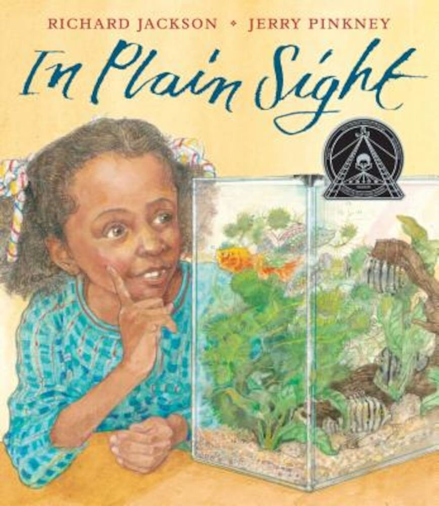 In Plain Sight: A Game, Hardcover