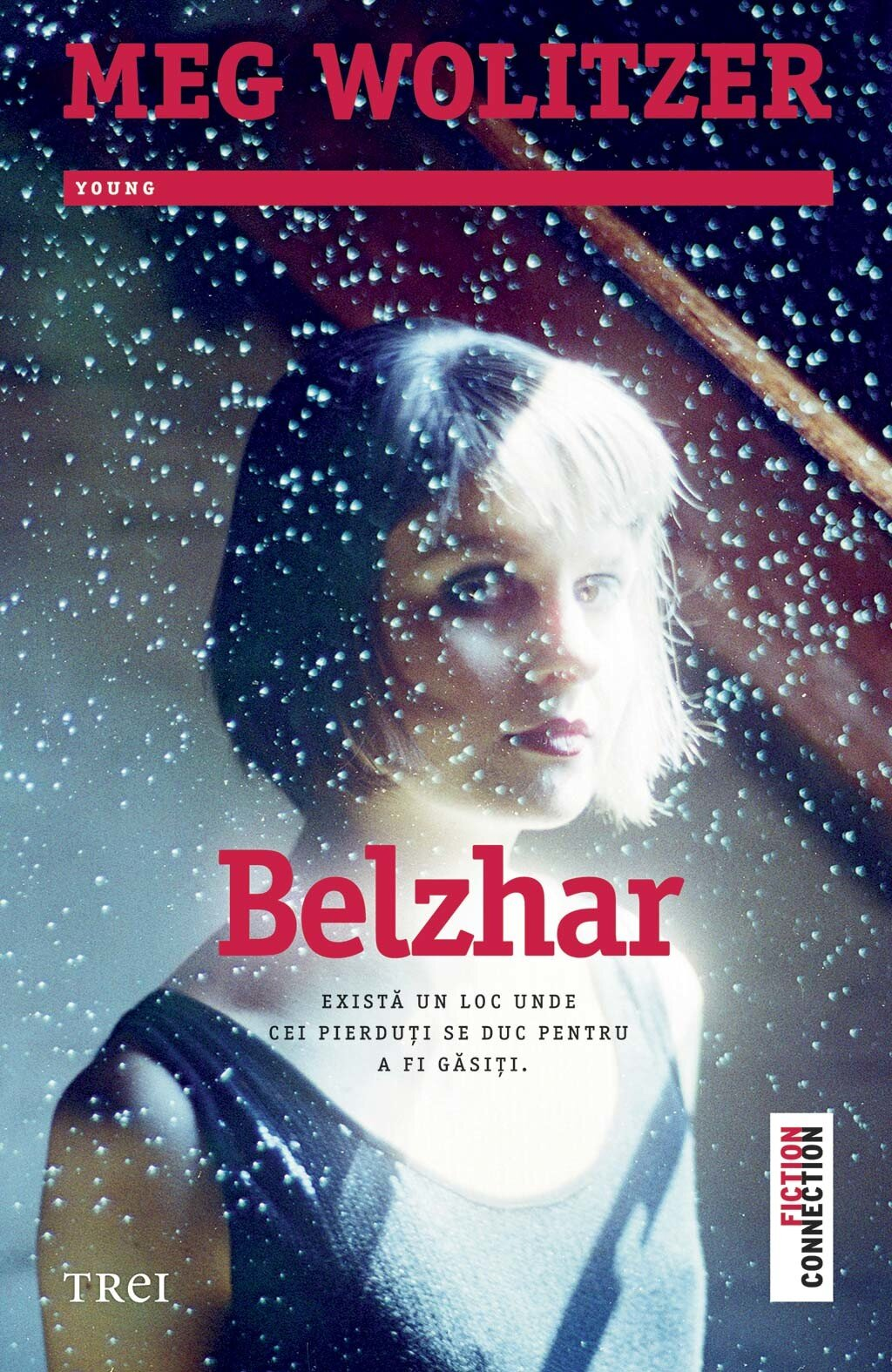Belzhar (eBook)