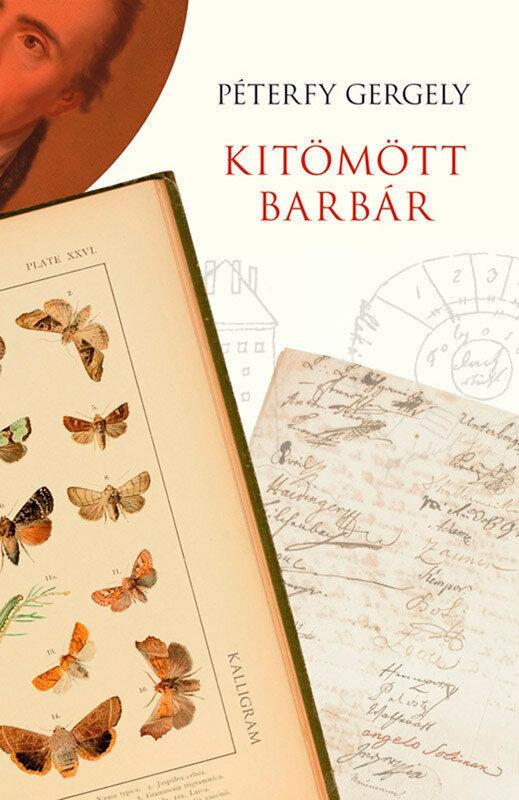 Kitomott barbar (eBook)