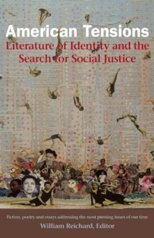 American Tensions: Literature of Identity and the Search for Social Justice, Paperback