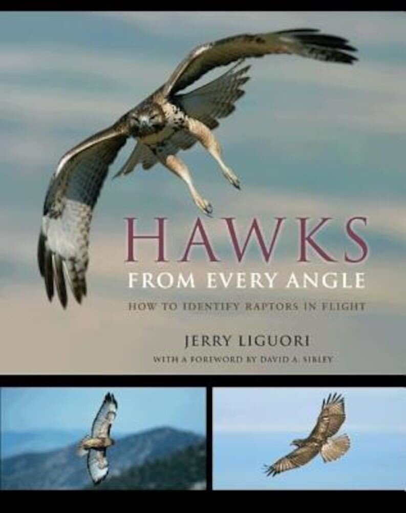 Hawks from Every Angle: How to Identify Raptors in Flight, Paperback