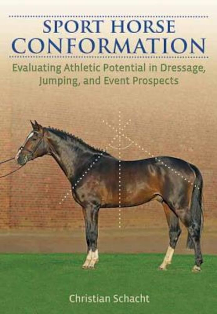 Sport Horse Conformation: Evaluating Athletic Potential in Dressage, Jumping and Event Prospects, Hardcover