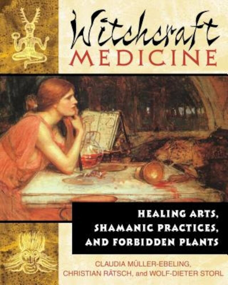The Witchcraft Medicine: How to Be Healthy and Productive Using Music and Sound, Paperback