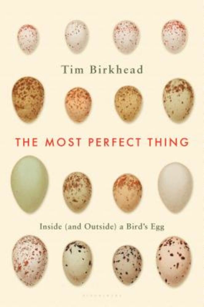 The Most Perfect Thing: Inside (and Outside) a Bird's Egg, Hardcover