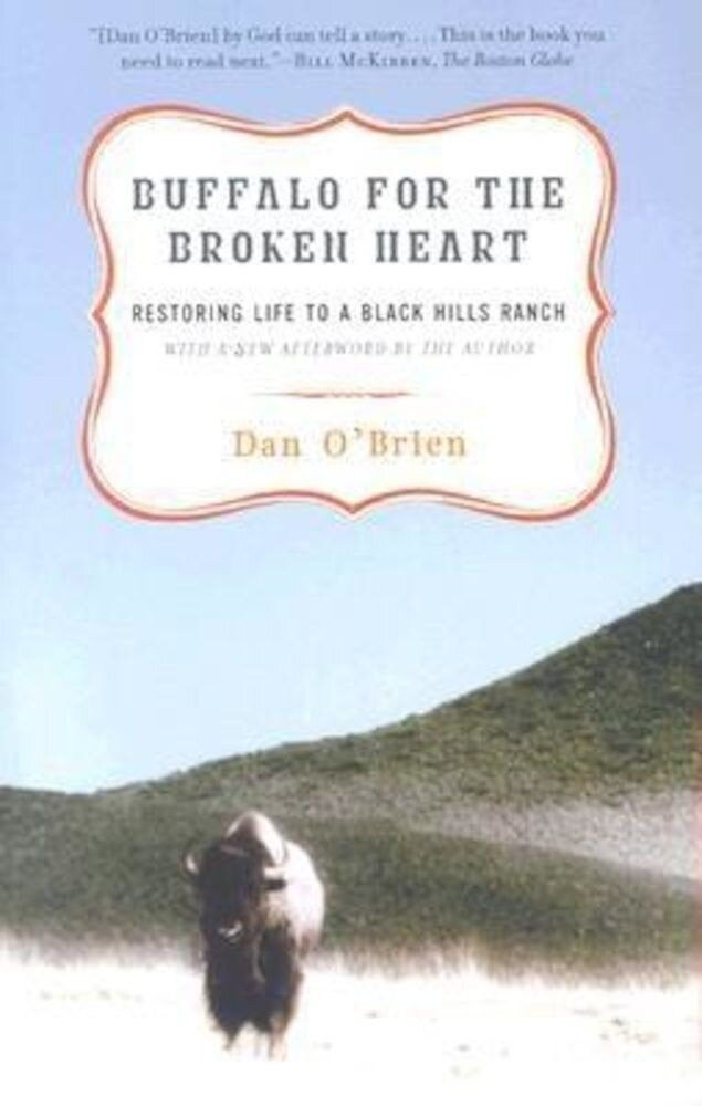 Buffalo for the Broken Heart: Restoring Life to a Black Hills Ranch, Paperback