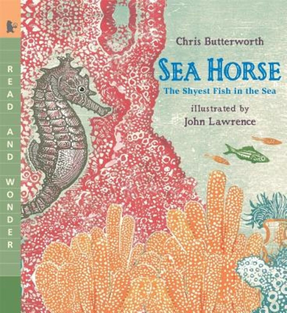 Sea Horse: The Shyest Fish in the Sea, Paperback