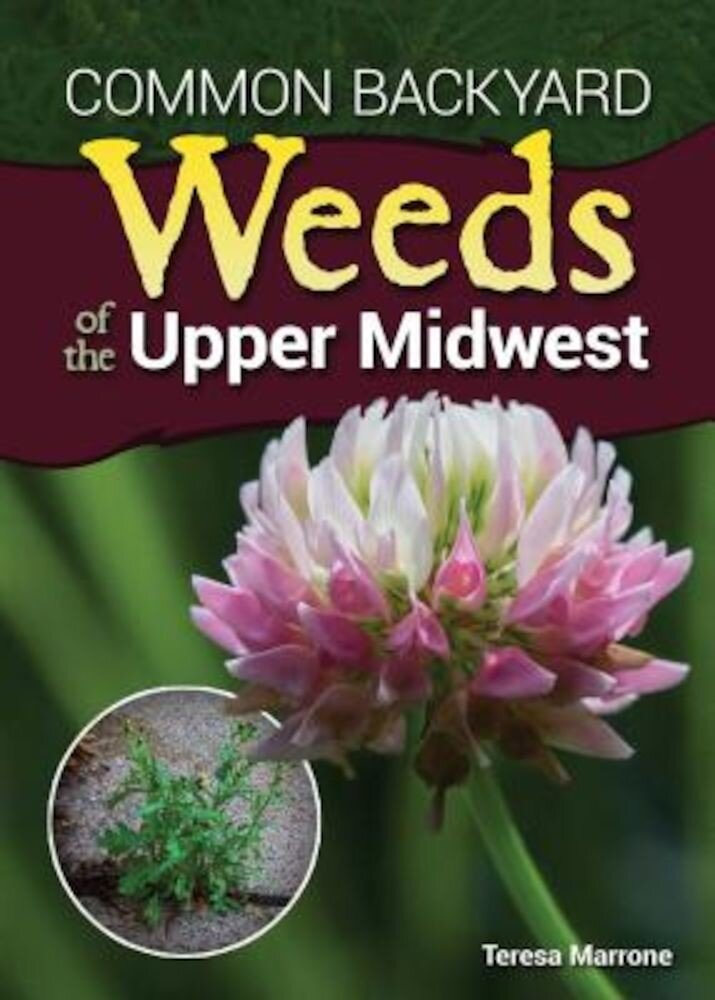Common Backyard Weeds of the Upper Midwest, Paperback