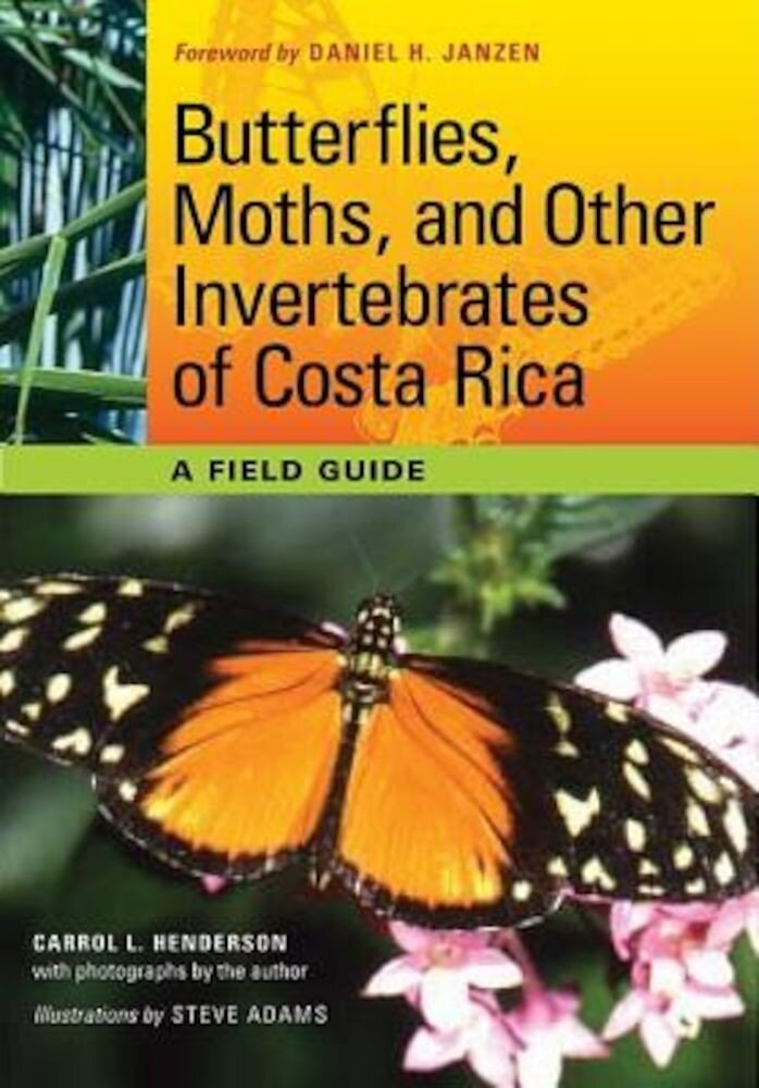 Butterflies, Moths, and Other Invertebrates of Costa Rica: A Field Guide, Paperback