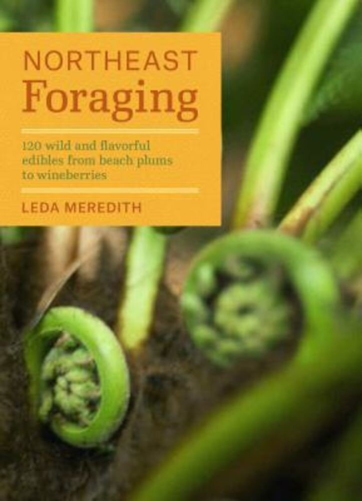 Northeast Foraging: 120 Wild and Flavorful Edibles from Beach Plums to Wineberries, Paperback