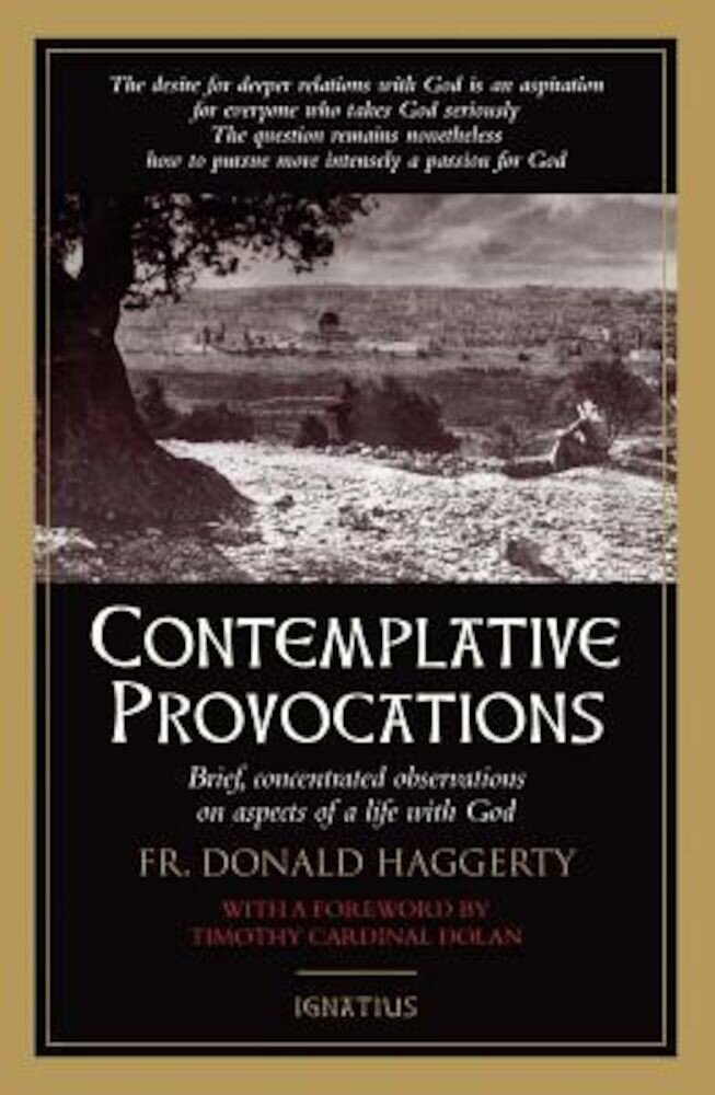Contemplative Provocations, Paperback
