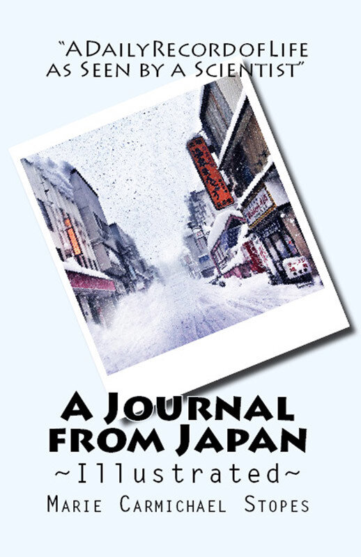 A Journal from Japan (eBook)
