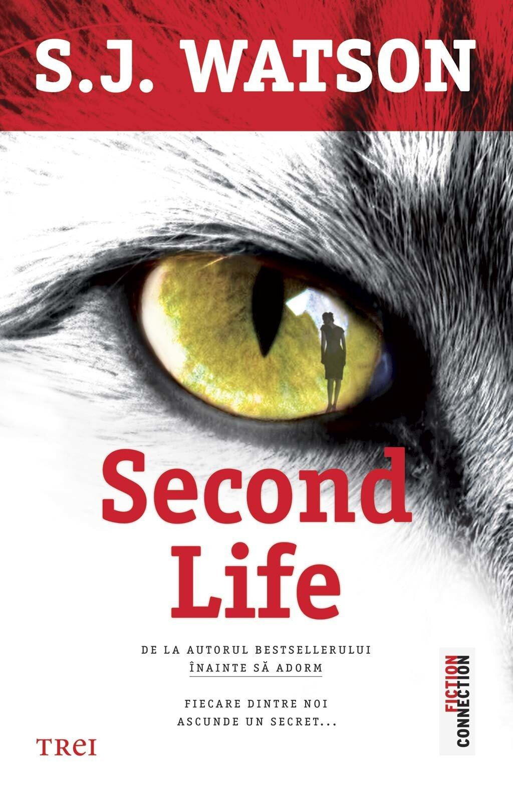 Second Life PDF (Download eBook)